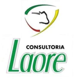 Relatório de visita - Consultoria Laore
