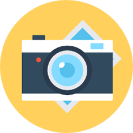 Saiba como colocar fotos nas fichas dos animais e como fazer a cópia de segurança desses registros