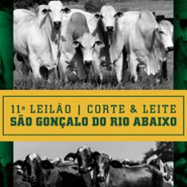 11º Leilão dos Produtores de São Gonçalo do Rio Abaixo/MG