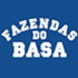 Leilão Fórmula BASA 2015