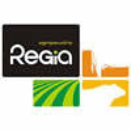 Agropecuária Régia, um case de sucesso na Pecuária Leiteira
