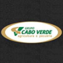 Eventos anuais do Grupo Cabo Verde ocorrem em abril