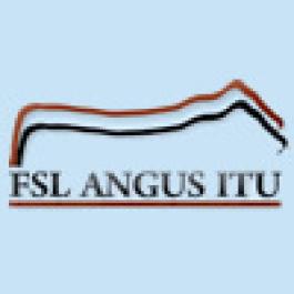 VIII Leilão FSL Angus Itu