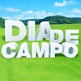 Fazendas Reunidas Santo Antônio realiza Dia de Campo sobre gestão econômico - financeira na pecuária leiteira