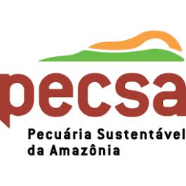 Trabalho em parceria muda a realidade da pecuária em Alta Floresta