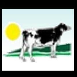 Túlio Marins, VAM Gado Holandês - Fazenda Morada do Sol, Três Corações - MG