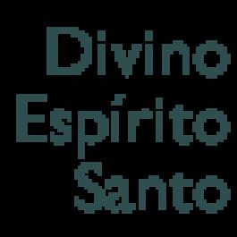 Luiz Paulo Vilela Oliveira, Fazenda Divino Espírito Santo, Santo Antônio do Amparo - MG*