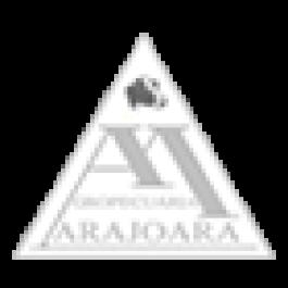 2º Leilão da Agropecuária Marajoara