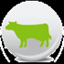 Dia do Leite - Fazenda Santa Helena - mais de 200 mil litros de leite produzidos por dia, reunidos em um só local