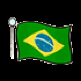 O futuro da Internet no Brasil - conexão pela rede elétrica, por Diogo M. Ferreira