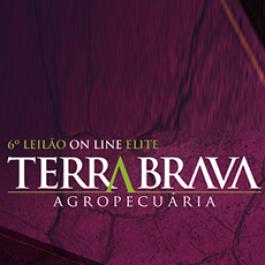 6º Leilão On Line Elite da Terra Brava Agropecuária