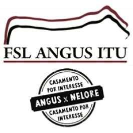 XI Leilão FSL Angus Itu