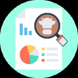 Conheça o Relatório 'Estoque de Rebanho' e saiba como obter o resultado consolidado por categorias e por grupos