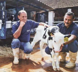 Os funcionários Joel Custódio da Silva (à dir.) e Antônio das Dores Brambilla